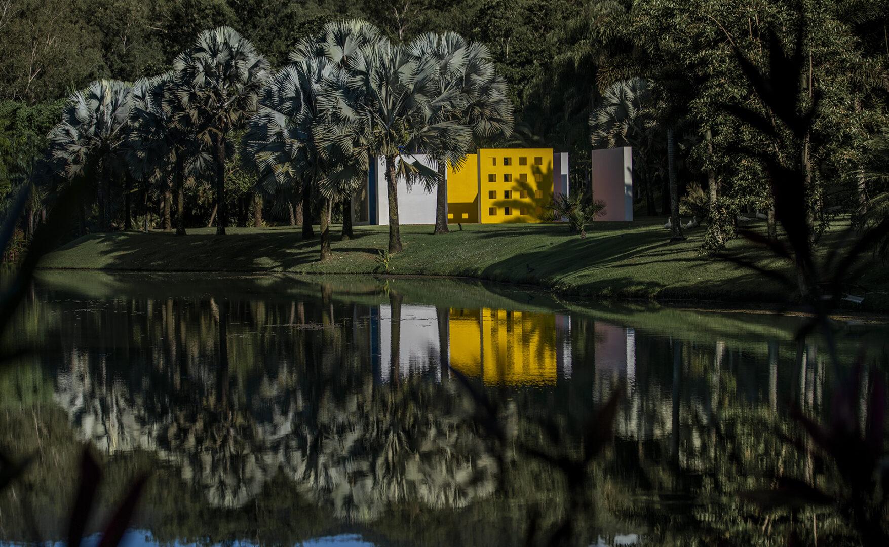 inhotim_brumadinho_arte_contemporanea_jardim_botanico