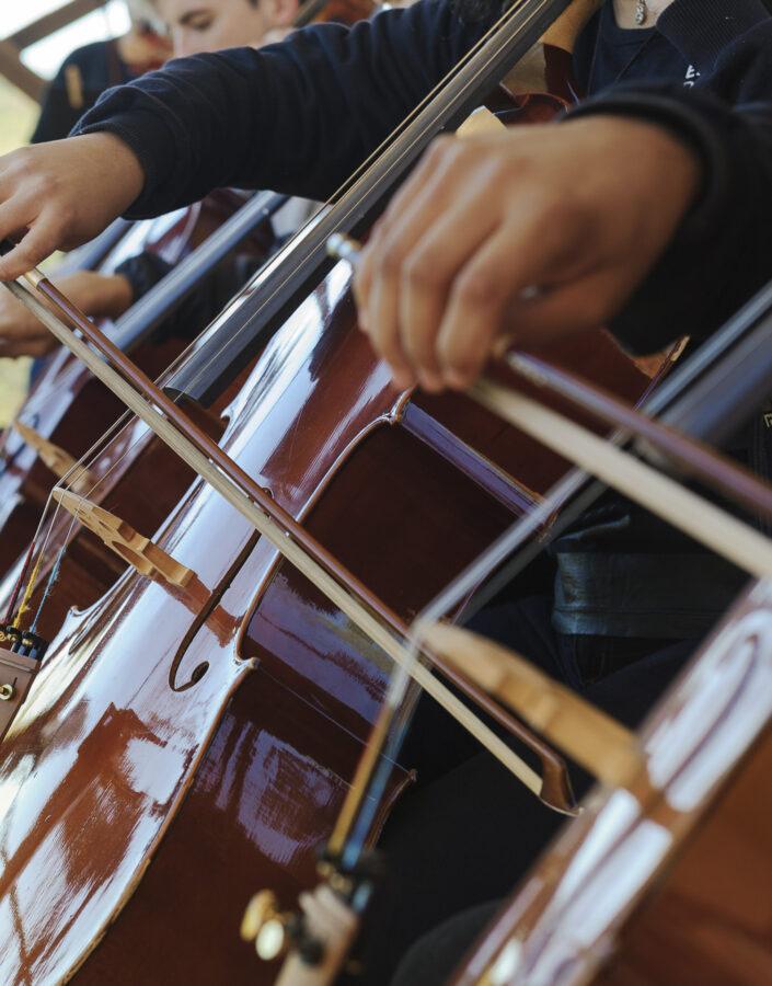 Escola de Música Educativo Inhotim