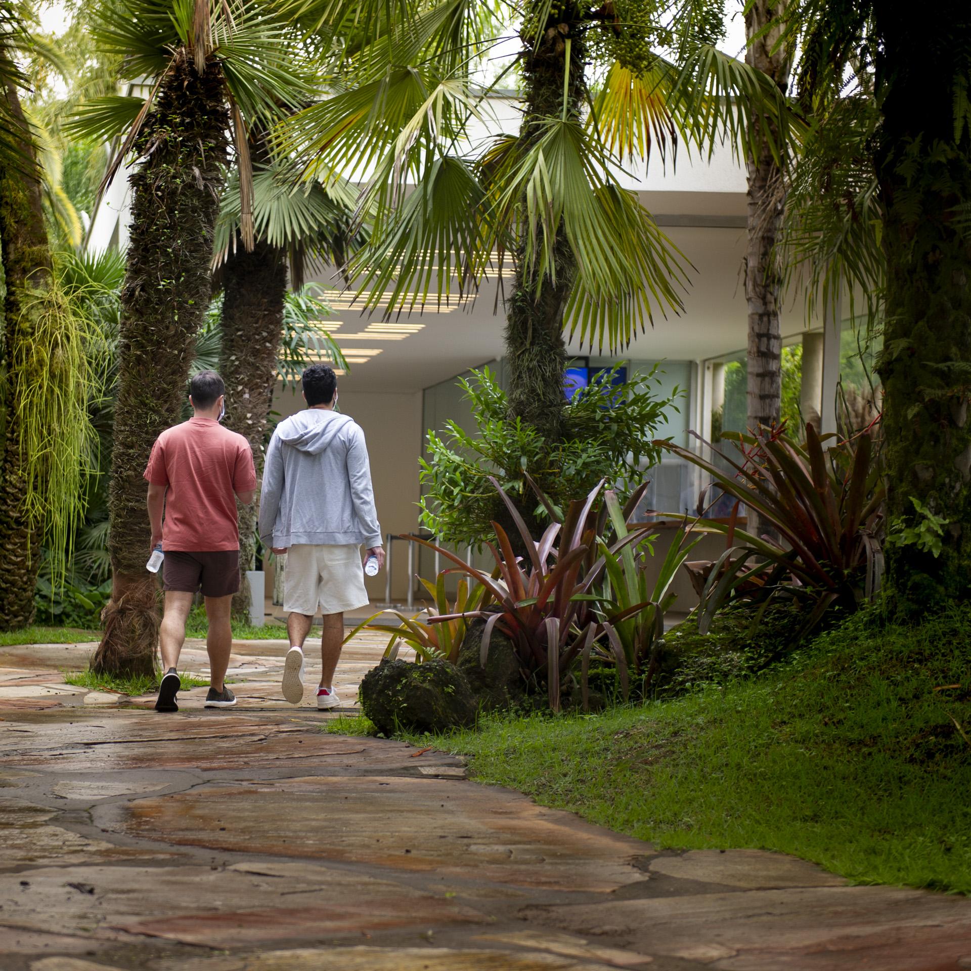 Horários visite Inhotim visitantes caminhando