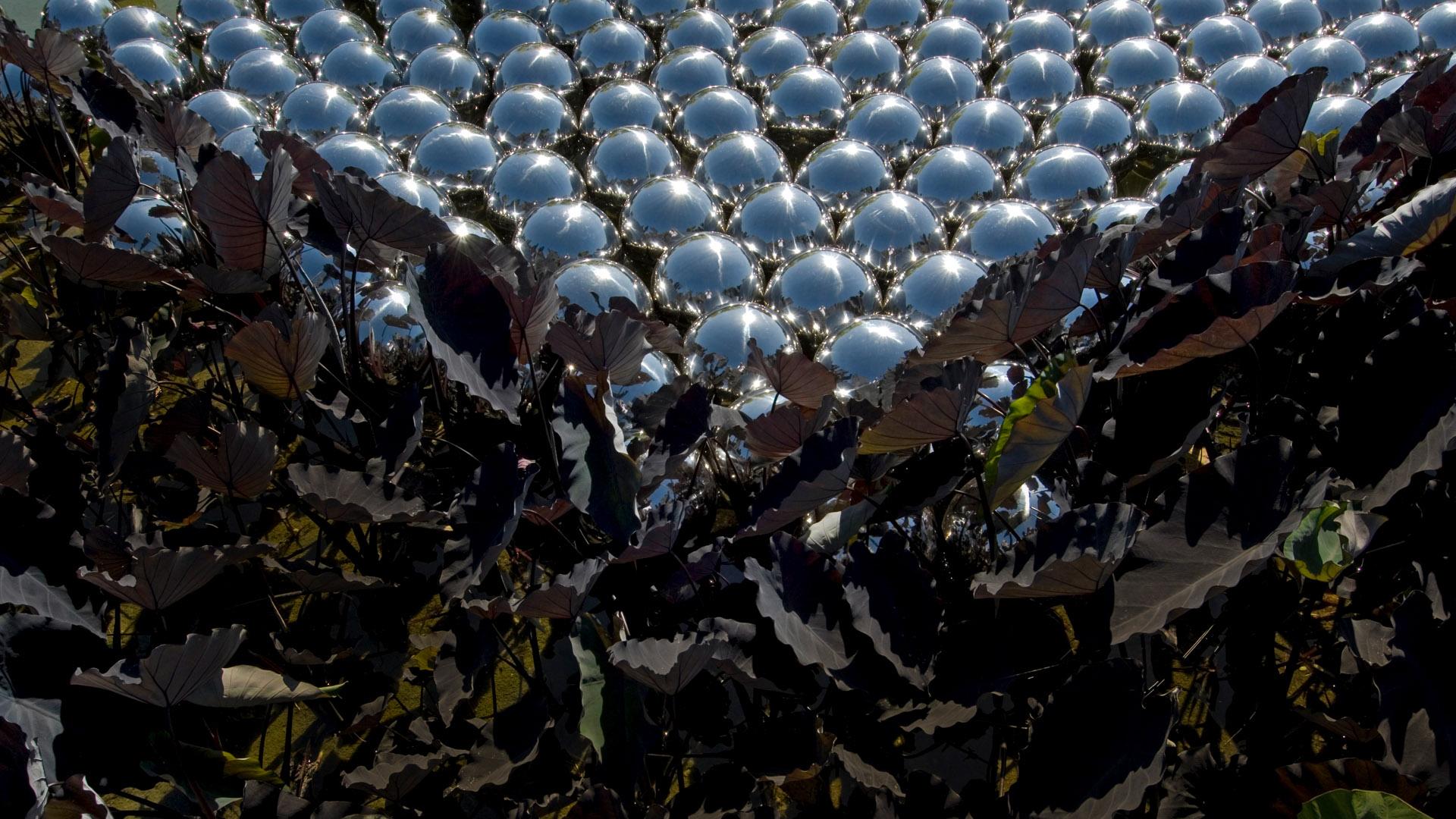 Obra Narcissus Garden Inhotim, 2009,  de Yayoi Kusama. Acervo de arte contemporânea do Inhotim