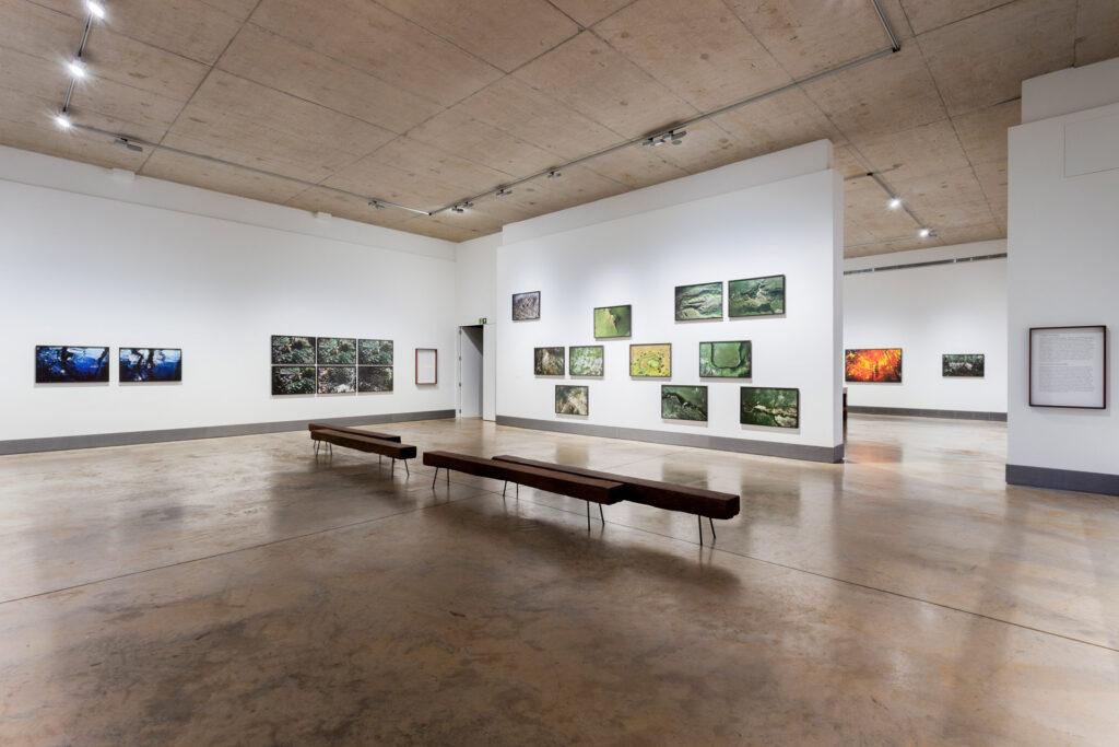 Galeria Claudia Andujar. Acervo de arte contemporânea do Inhotim