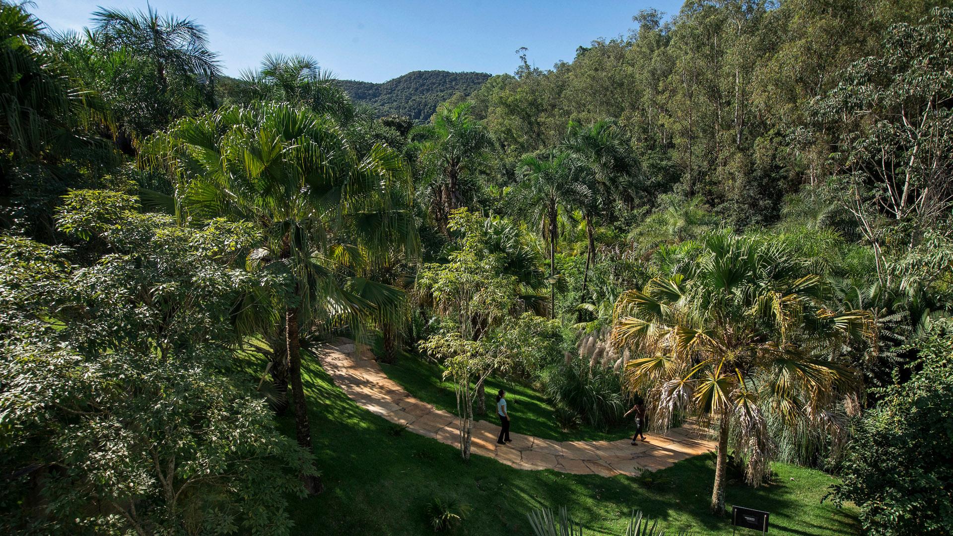 Jardim Sombra e Água Fresca Inhotim