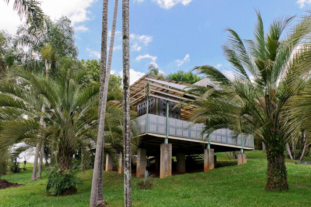 Palm Pavilion, 2006-08 de Rirkrit Tiravanija. Acervo de arte contemporânea Inhotim