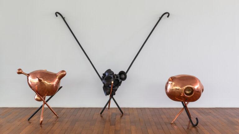 Obra A bela e a fera, 2001, de Tunga. Acervo de arte contemporânea Inhotim