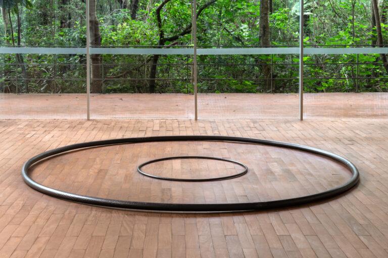 Obra Toro Expanded, 2012, de Tunga. Acervo de arte contemporânea Inhotim